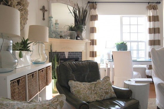 using plants in your home part 1
