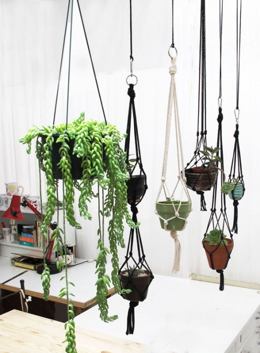 Using Plants in Your Home Part 3 :: Planters Indoors and Out