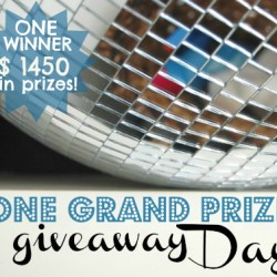 One Grand Prize Winner Giveaway Day // Nesting Place