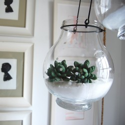 snow terrarium and lantern