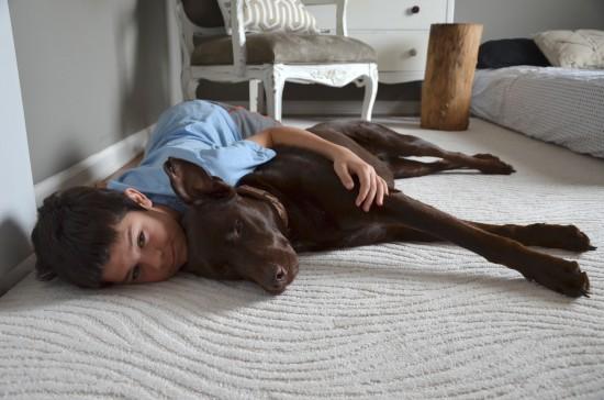 doggie boy