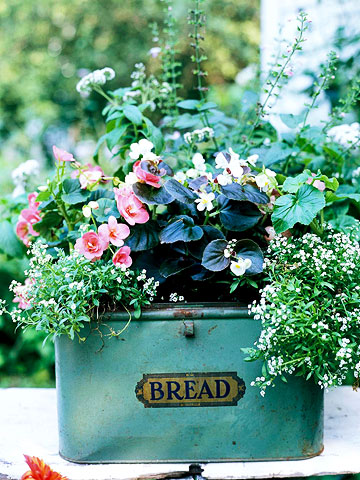 bread box container garden