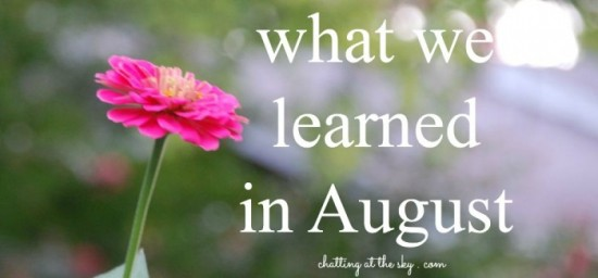 what-we-learned-in-august-700x326