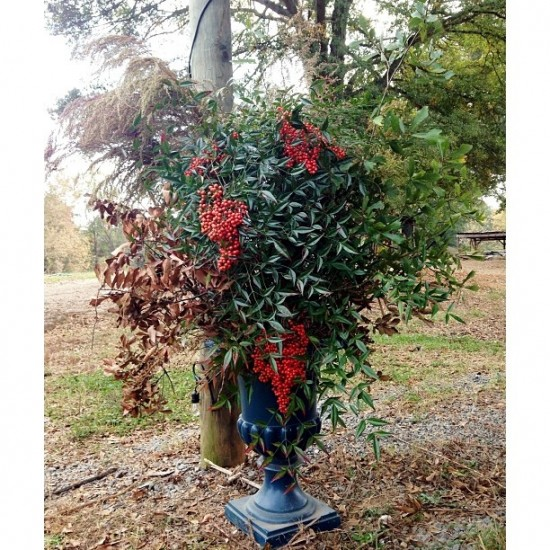 blue urn with fall branches
