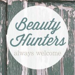 beauty hunters