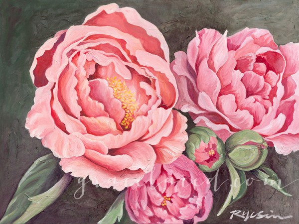 gracelaced pink peonies