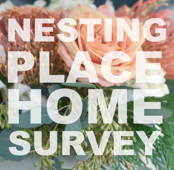 home survey