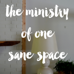 the ministry of one sane space
