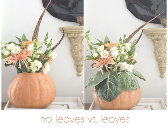 with and without leaves