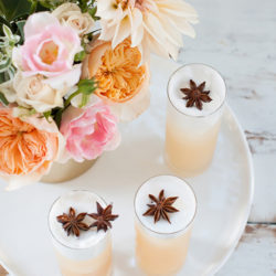 Apple-Brandy-Allspice-Fizz-
